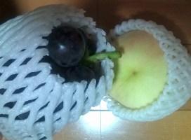 桃とぶどう.JPG